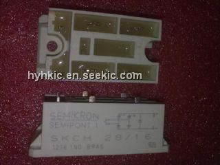 SKCH28-16 Picture